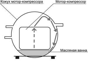 ris 1.jpg
